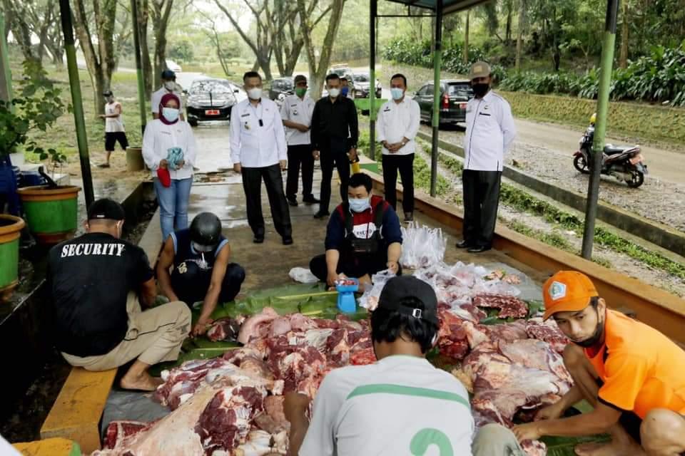 (Walikota Kendari melihat langsung proses penyembelihan hewan kurban)